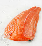 Salmon fillet. And ice cubes Stock Photography