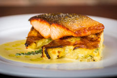 Salmon fillet. On a cauliflower gratin Royalty Free Stock Photography