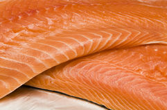 Salmon Fillet. Selective focus on fresh salmon fillet Royalty Free Stock Photography