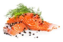 Salmon Fillet lizenzfreies stockbild