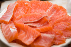 Salmon fillet. Full dish of fresh light salted salmon fillet Stock Images