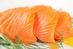 Salmon Fillet Royalty-vrije Stock Foto's