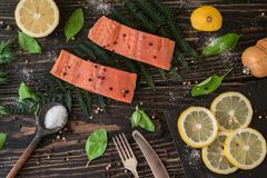 Salmon fillet on a branch of fern Stock Image