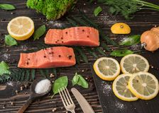 Salmon fillet on a branch of fern Royalty Free Stock Photography