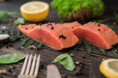 Salmon fillet on a branch of fern Royalty Free Stock Photo