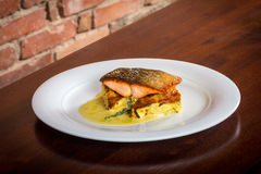 Salmon fillet on a cauliflower gratin. For lunch or diner Stock Photography