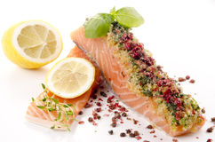Salmon fillet with a crust Stock Images