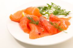 Salmon fillet and dill royalty free stock images