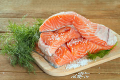 Salmon fillet with dill Royalty Free Stock Photos