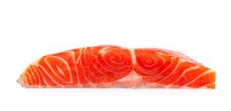 Salmon Fillet fresco su fondo bianco immagini stock libere da diritti