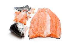 Salmon  fillet with  head and bones isolated on white background Stock Image