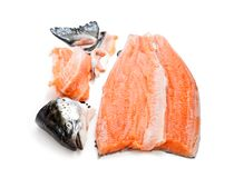 Salmon  fillet with head and bones  on white background Stock Photos
