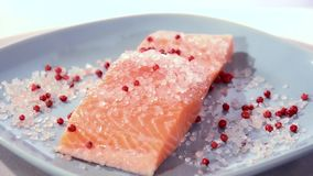 Salmon fillet Royalty Free Stock Photo