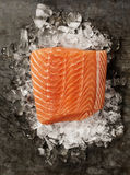 Salmon Fillet on Ice. Raw salmon fillet and ingredients for cooking in a rustic style. Top view Stock Image