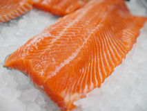 Salmon fillet on ice. Royalty Free Stock Images