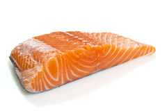 Salmon fillet isolated Stock Photography