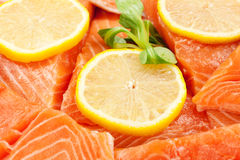 Salmon fillet with lemon Stock Image
