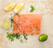 Salmon fillet with lemon lime dill and spices Royalty Free Stock Images