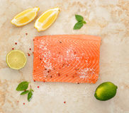 Salmon fillet with lemon lime and spices Royalty Free Stock Images