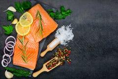 Salmon Fillet met Kruiden en Kruiden op Exemplaarruimte Stock Afbeelding