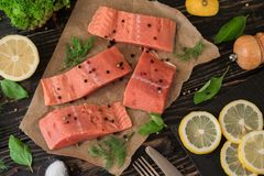 Salmon fillet on parchment paper Stock Image