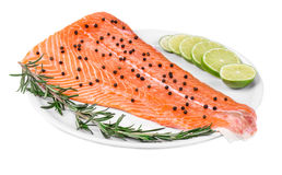 Salmon fillet with pepper lime and rosemary. Stock Images
