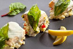 Salmon Fillet with Risotto Stock Photography