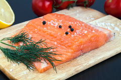 Salmon fillet with salt, pepper and dill Stock Image
