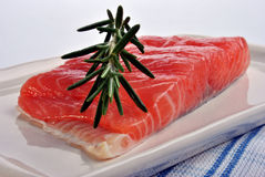 Salmon fillet with some organic rosemary Stock Image