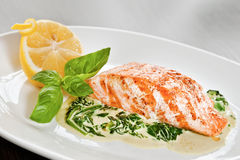 Salmon fillet with spinach Royalty Free Stock Photos