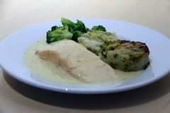 Salmon Fillet with vegetable medallions, mixed vegetable, green broccoli, lemon and dill sauce in the white dish. Salmon Fillet with vegetable medallions, mixed stock photo
