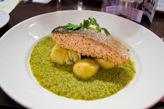 Salmon Fillet With Vegetables Royalty Free Stock Images