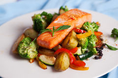 Salmon fillet with vegetables and basil Royalty Free Stock Photography