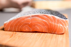 Salmon. Fillet on a wooden tray royalty free stock image