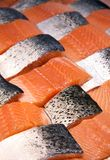 Salmon fillets Stock Photography