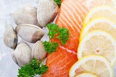 Salmon fillets royalty free stock photos