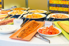Salmon Fillets and Garnishes Stock Image