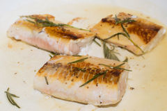 Salmon fillets getting cooked on a pan with rosemary Royalty Free Stock Photography