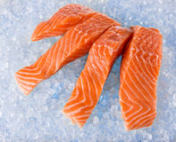 Salmon Fillets on Ice. Fresh Salmon Fillets on crushed ice, close-up Stock Image