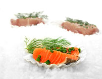 Salmon Fillets 2 Royalty Free Stock Images