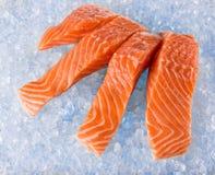 Salmon Fillets sur la glace image stock