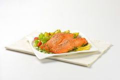 Salmon fillets with vegetables Stock Photography