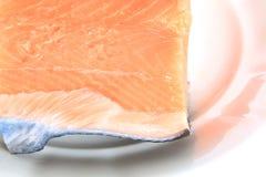 Salmon fish Stock Photos