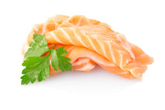 Salmon fish Stock Photography
