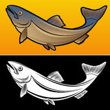 Salmon Fish. In 2 versions Illustration Royalty Free Stock Photos