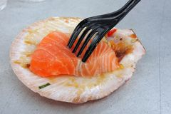 Salmon fish on a clam shell Royalty Free Stock Photography