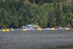 Salmon Fish Farm, British Columbia Coast Stock Photos