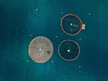 Salmon fish farm with floating cages. Aerial view Royalty Free Stock Photo