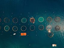 Salmon fish farm with floating cages. Aerial view Royalty Free Stock Photography