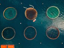 Salmon fish farm with floating cages. Aerial view stock images